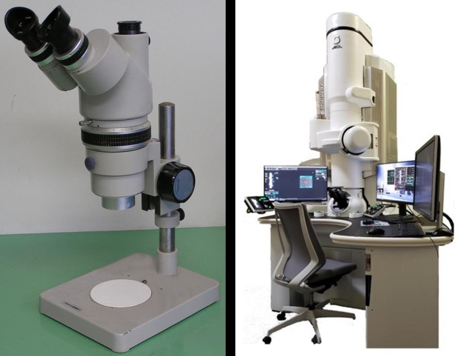 光学顕微鏡と電子顕微鏡