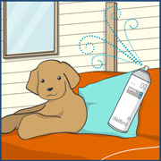 ペットに関する感染症予防・消臭対策のイラスト画像